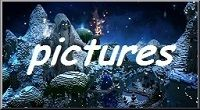 Minecraft pictures island pvp skyblock server075